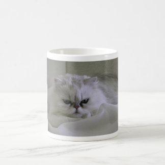 Gato blanco que miente en la cama taza