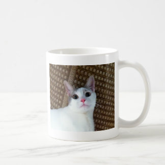 Gato blanco sorprendido taza clásica