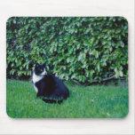 Gato blanco y negro alfombrilla de ratones