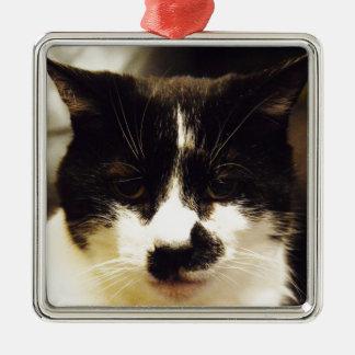 Gato blanco y negro de Monty Adorno Navideño Cuadrado De Metal