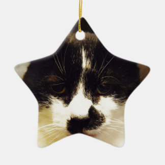 Gato blanco y negro de Monty Adorno Navideño De Cerámica En Forma De Estrella