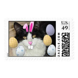 Gato blanco y negro del gatito de Pascua Sello