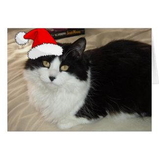 Gato blanco y negro del navidad tarjeta de felicitación