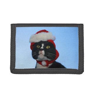 Gato blanco y negro del smoking con el gorra de sa