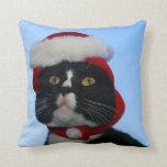 Gato blanco y negro del smoking con el gorra de sa almohada
