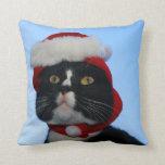 Gato blanco y negro del smoking con el gorra de sa almohadas