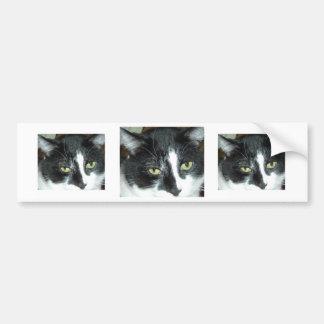 Gato blanco y negro del smoking pegatina para auto