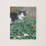 Gato blanco y negro en verdor puzzles
