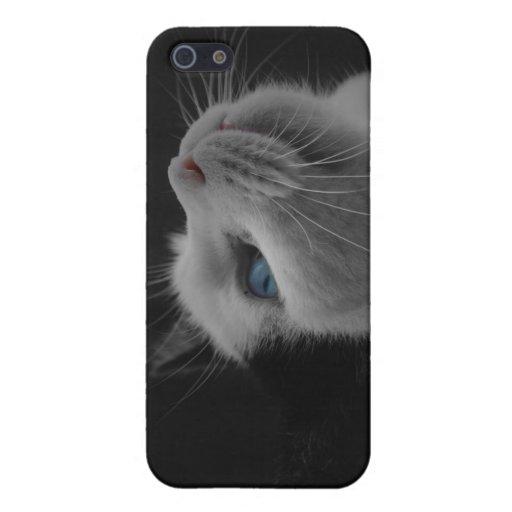 Gato blanco y negro iPhone 5 fundas