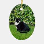 Gato blanco y negro ornamentos de navidad