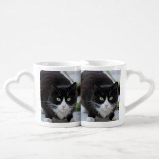 Gato blanco y negro tazas amorosas