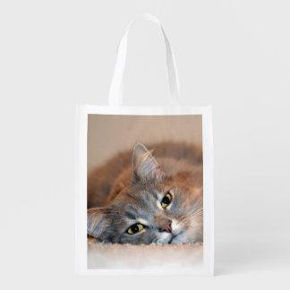 Gato Bolsas Para La Compra
