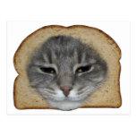 Gato Breader Postales