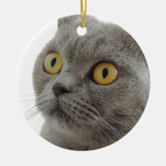 Gato británico lindo de Shorthair Adorno Navideño Redondo De Cerámica
