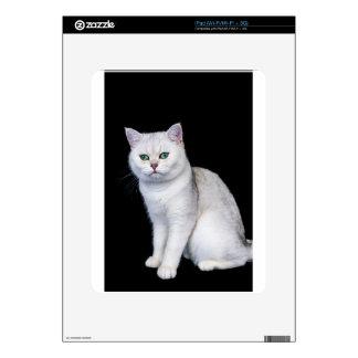 Gato británico sombreado plata negra del pelo calcomanía para iPad
