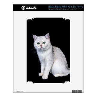 Gato británico sombreado plata negra del pelo calcomanías para el NOOK