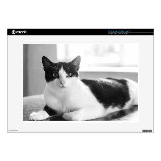 gato calcomanía para 38,1cm portátil