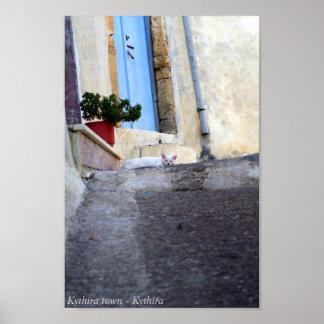 Gato callejero blanco póster