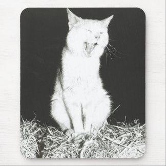 Gato cansado alfombrilla de ratón