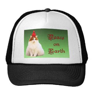 gato cardinal gorras de camionero