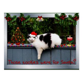 Gato cariñoso de la galleta tarjeta postal