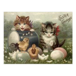 Gato coloreado polluelo del gatito del huevo de Pa Postal