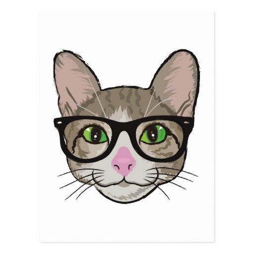 Gato colorido del inconformista tarjetas postales