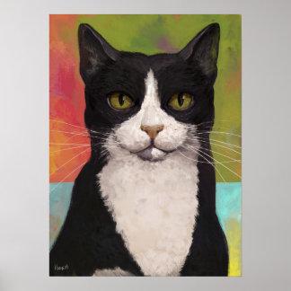 Gato colorido del smoking póster