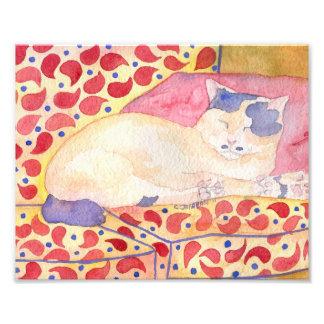 Gato colorido en la impresión del arte del sofá fotografías