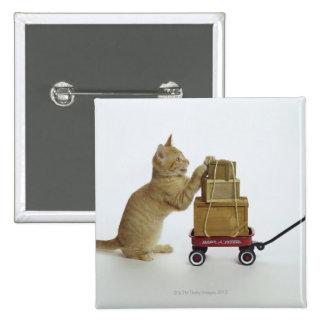 Gato con el carro y las cajas pin