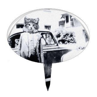 Gato con el coche de A Palillos De Tarta