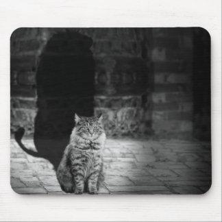 Gato con el cojín de ratón de la sombra de los alfombrilla de ratón