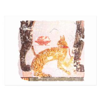 gato con el cuello postal