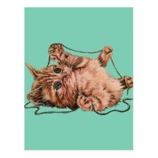 Gato con el dibujo del hilado del gatito del postales