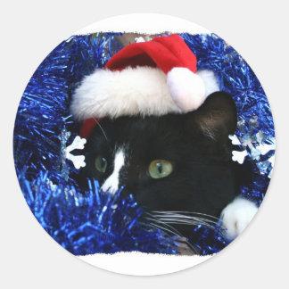 Gato con el gorra de santa que mira hacia fuera de etiquetas redondas