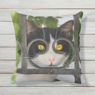 Gato con el marco de gafas divertido - para el cojín decorativo