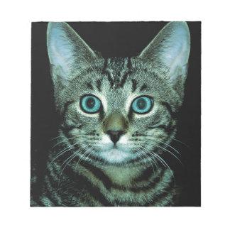 Gato con el ojo de la casa del mascota del persona libreta para notas