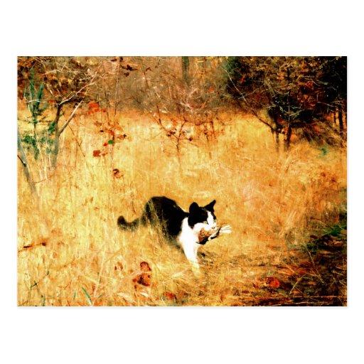 Gato con el pájaro en boca postales
