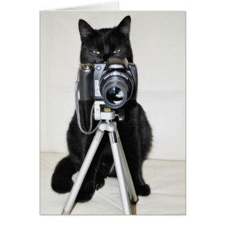 Gato con la cámara tarjeta de felicitación