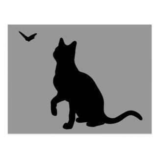Gato con la postal de la mariposa