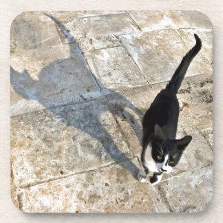 Gato con la sombra que camina hacia cámara posavasos de bebida