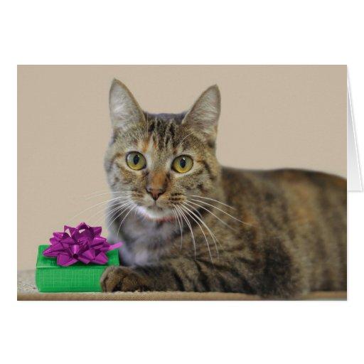 Gato con la tarjeta de cumpleaños del regalo