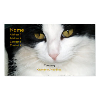 Gato con la tarjeta de visita de oro de los ojos