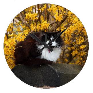 Gato con las flores amarillas relojes