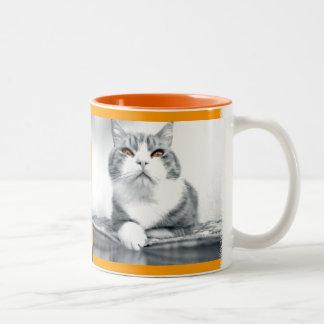 Gato con los ojos anaranjados del poder taza dos tonos