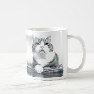 Gato con los ojos anaranjados taza clásica