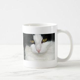 Gato con los ojos de oro tazas