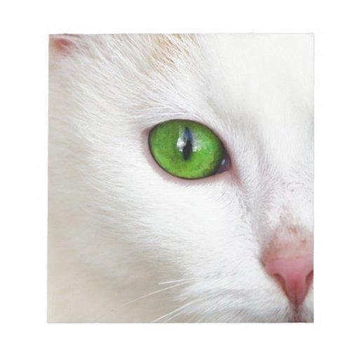 gato con los ojos verdes libretas para notas