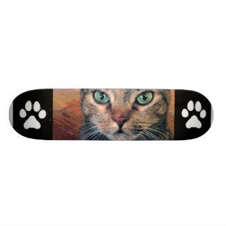 Gato con los ojos verdes tabla de skate