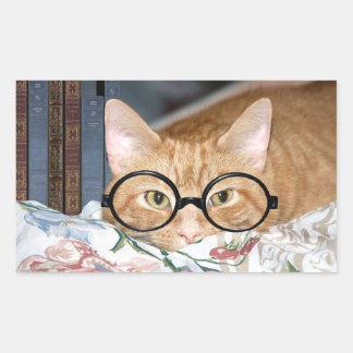 Gato con los vidrios y los libros pegatina rectangular